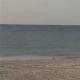 OC: Heritage Surf Cam